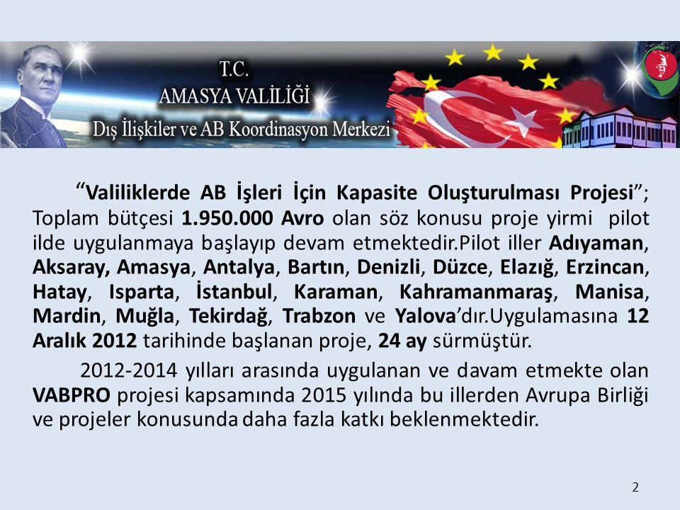 Valiliklerde AB İşleri İçin Kapasite Oluşturulması Projesi ; Toplam bütçesi 1.950.000 Avro olan söz konusu proje yirmi pilot ilde uygulanmaya başlayıp devam etmektedir.Pilot iller Adıyaman, Aksaray, Amasya, Antalya, Bartın, Denizli, Düzce, Elazığ, Erzincan, Hatay, Isparta, İstanbul, Karaman, Kahramanmaraş, Manisa, Mardin, Muğla, Tekirdağ, Trabzon ve Yalova'dır.Uygulamasına 12 Aralık 2012 tarihinde başlanan proje, 24 ay sürmüştür.