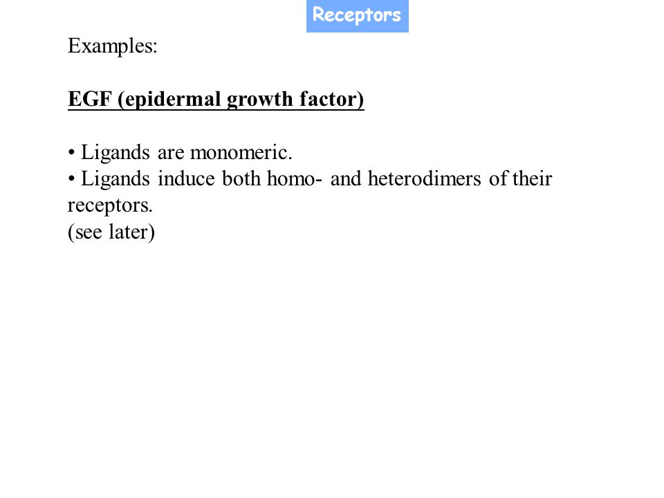 EGF (epidermal growth factor) • Ligands are monomeric.