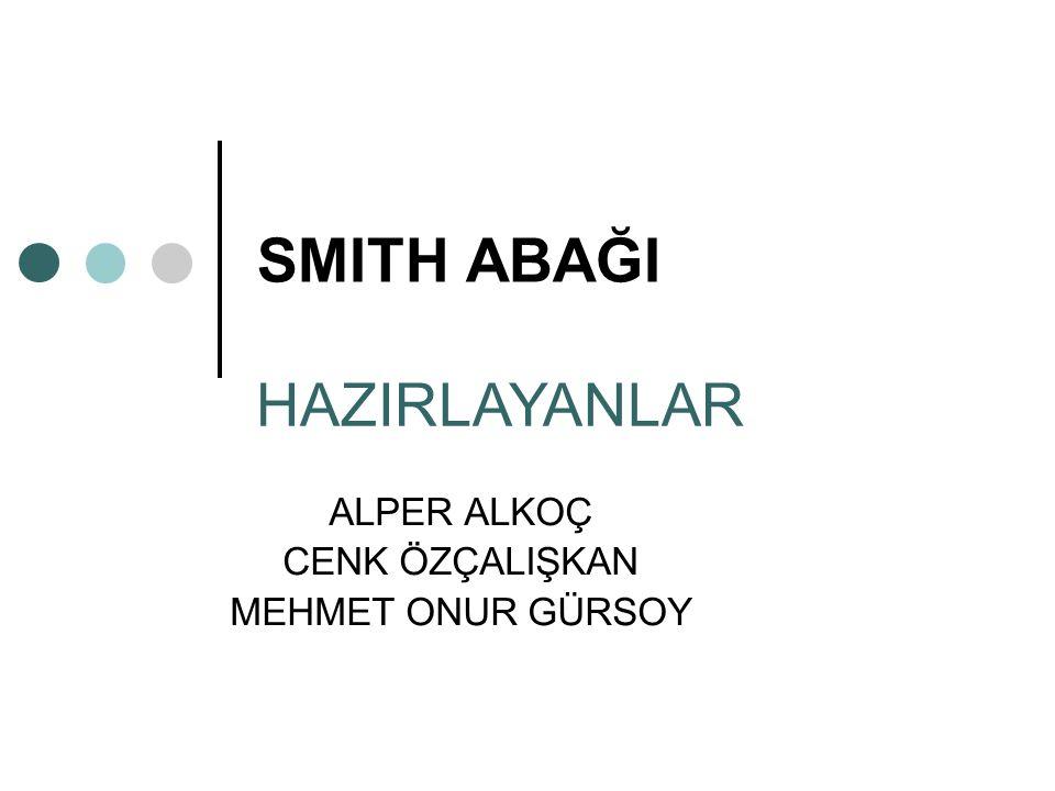 ALPER ALKOÇ CENK ÖZÇALIŞKAN MEHMET ONUR GÜRSOY