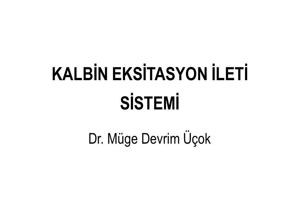 KALBİN EKSİTASYON İLETİ SİSTEMİ