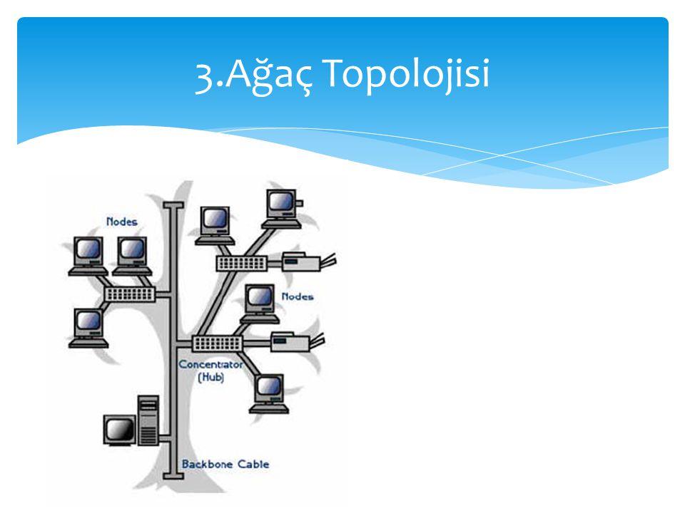 3.Ağaç Topolojisi