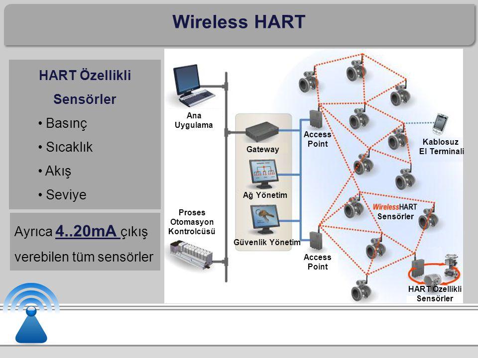 Proses Otomasyon Kontrolcüsü HART Özellikli Sensörler