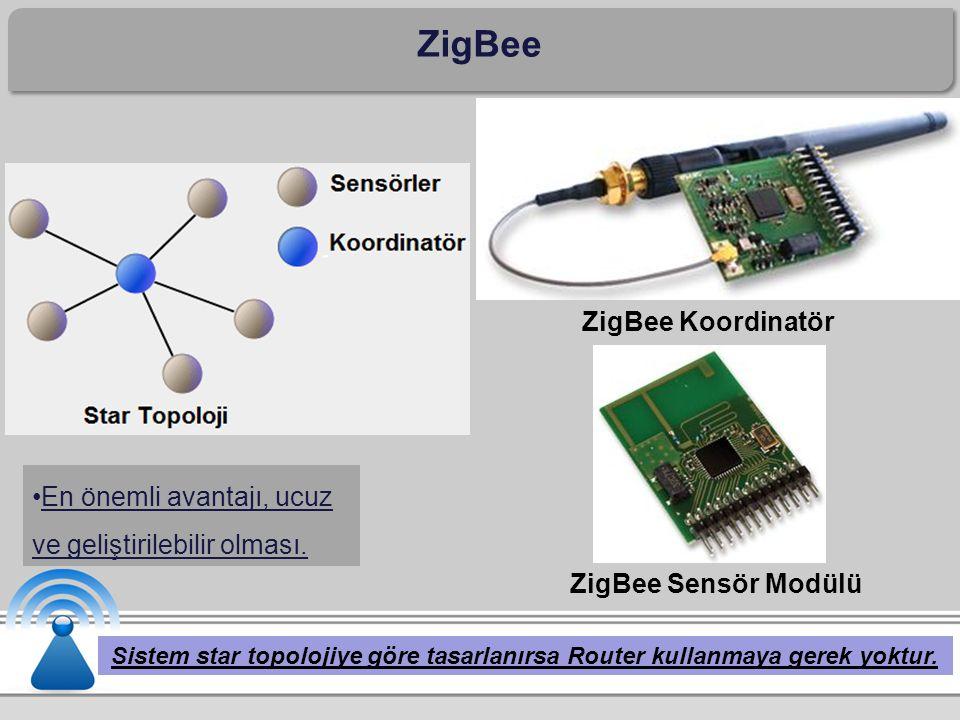 ZigBee ZigBee Koordinatör