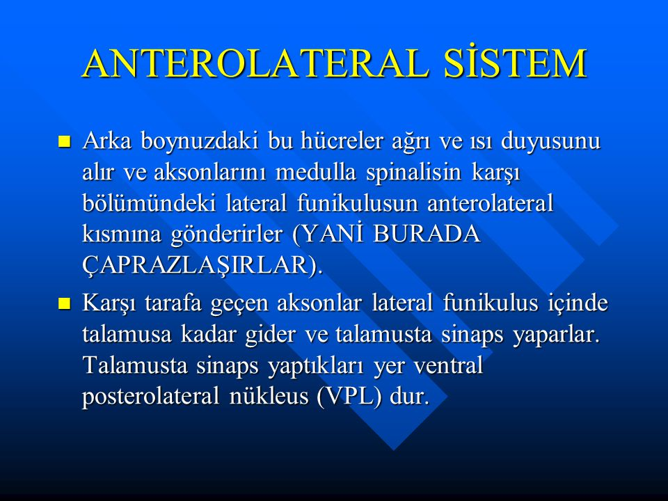 ANTEROLATERAL SİSTEM