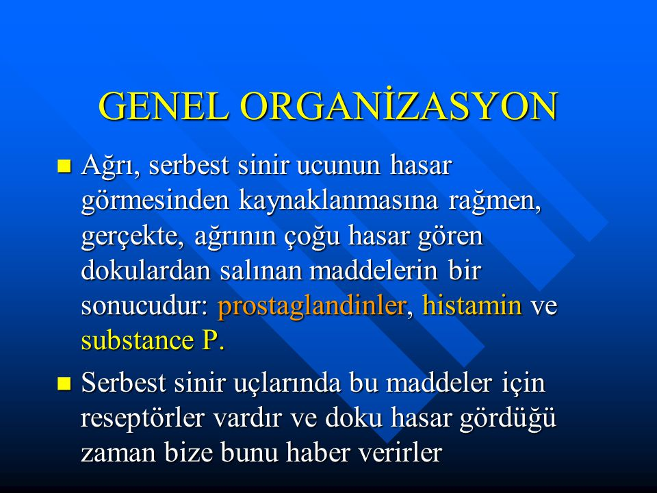GENEL ORGANİZASYON