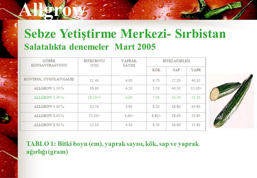 Sebze Yetiştirme Merkezi- Sırbistan
