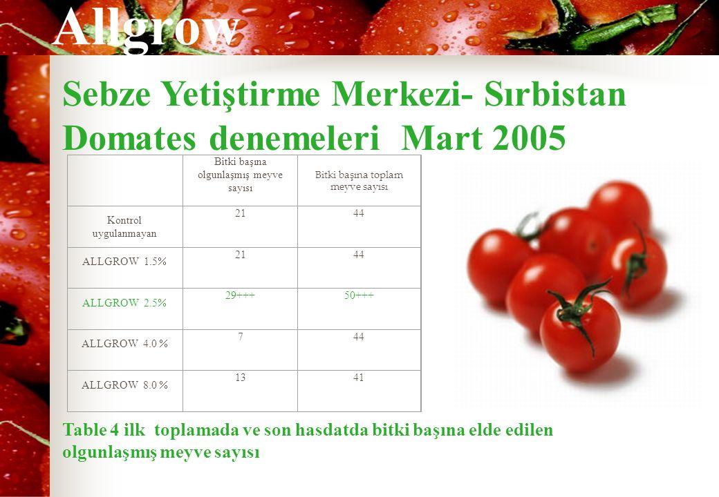 Sebze Yetiştirme Merkezi- Sırbistan Domates denemeleri Mart 2005