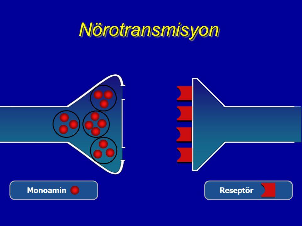 Nörotransmisyon Monoamin Reseptör