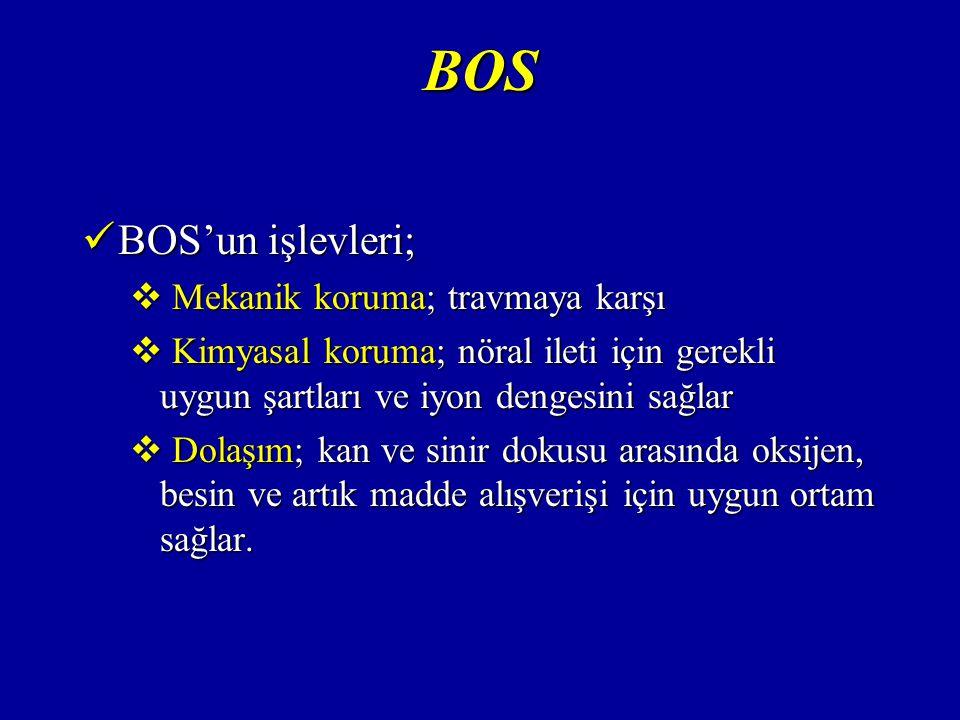 BOS BOS'un işlevleri; Mekanik koruma; travmaya karşı