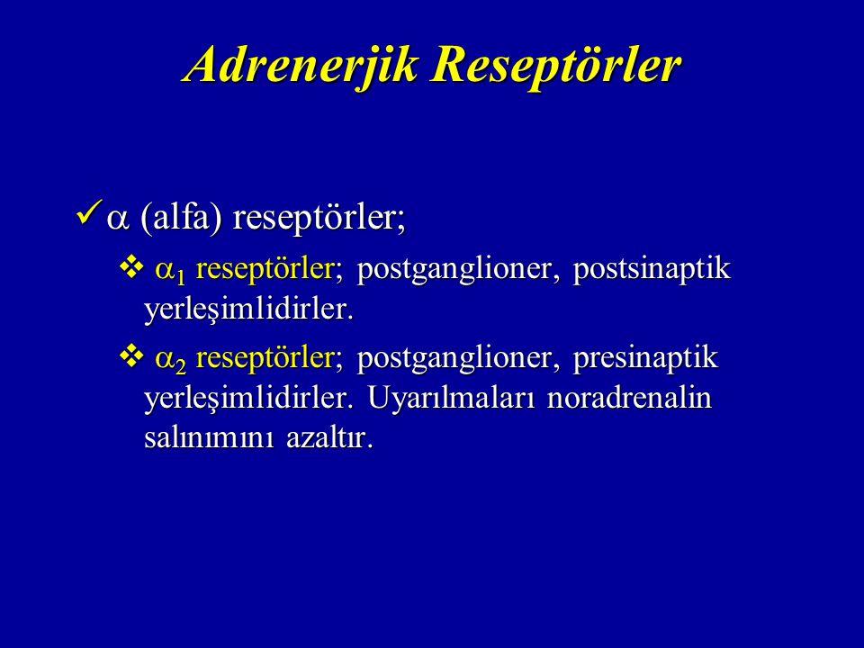 Adrenerjik Reseptörler