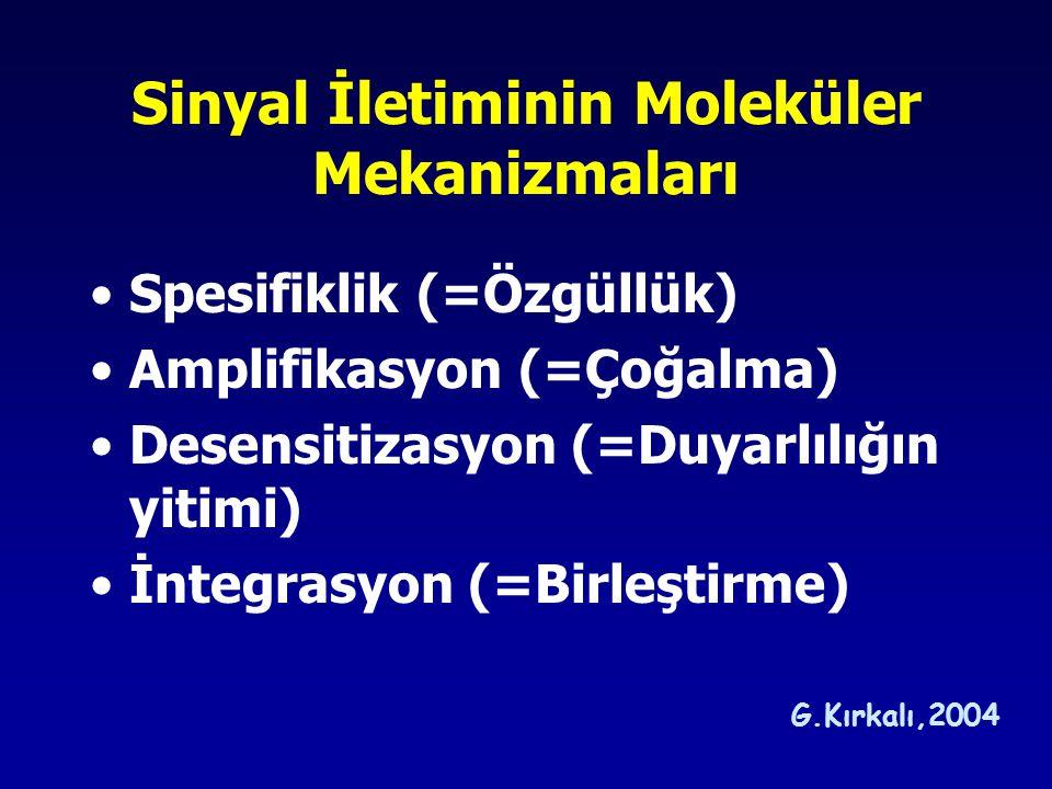 Sinyal İletiminin Moleküler Mekanizmaları