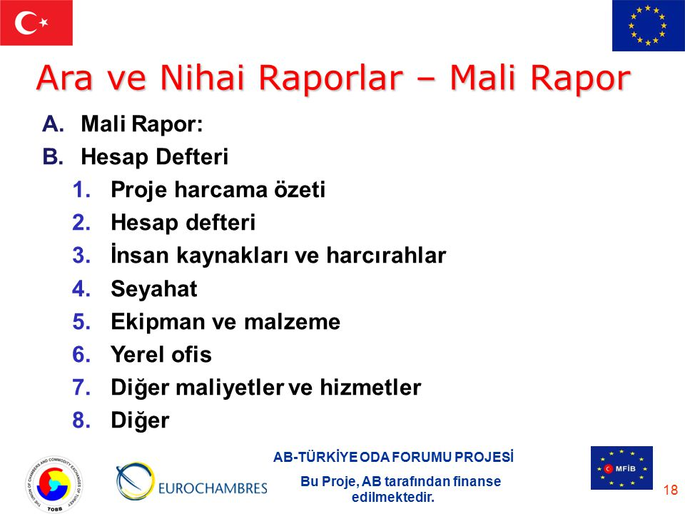Ara ve Nihai Raporlar – Mali Rapor