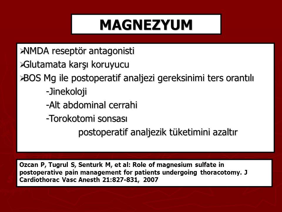 MAGNEZYUM NMDA reseptör antagonisti Glutamata karşı koruyucu