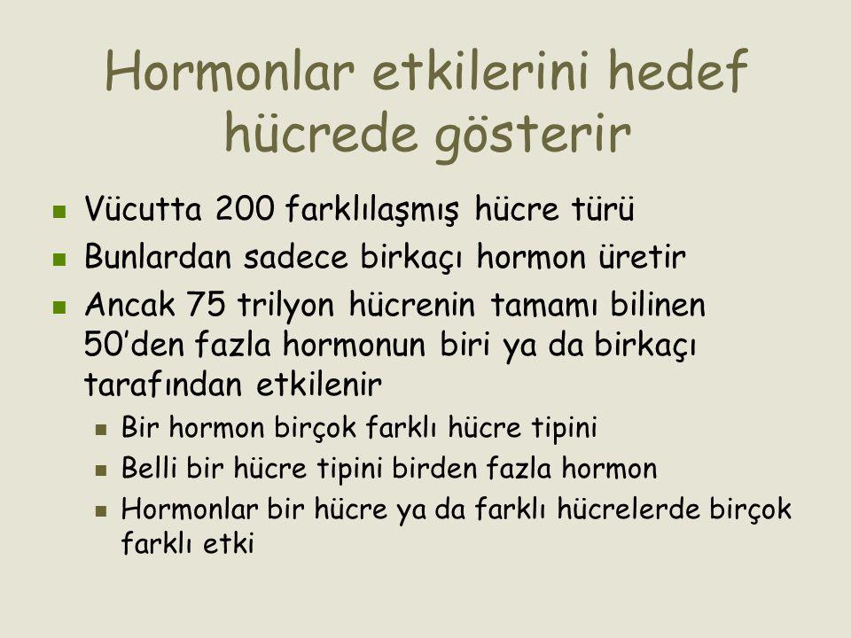 Hormonlar etkilerini hedef hücrede gösterir