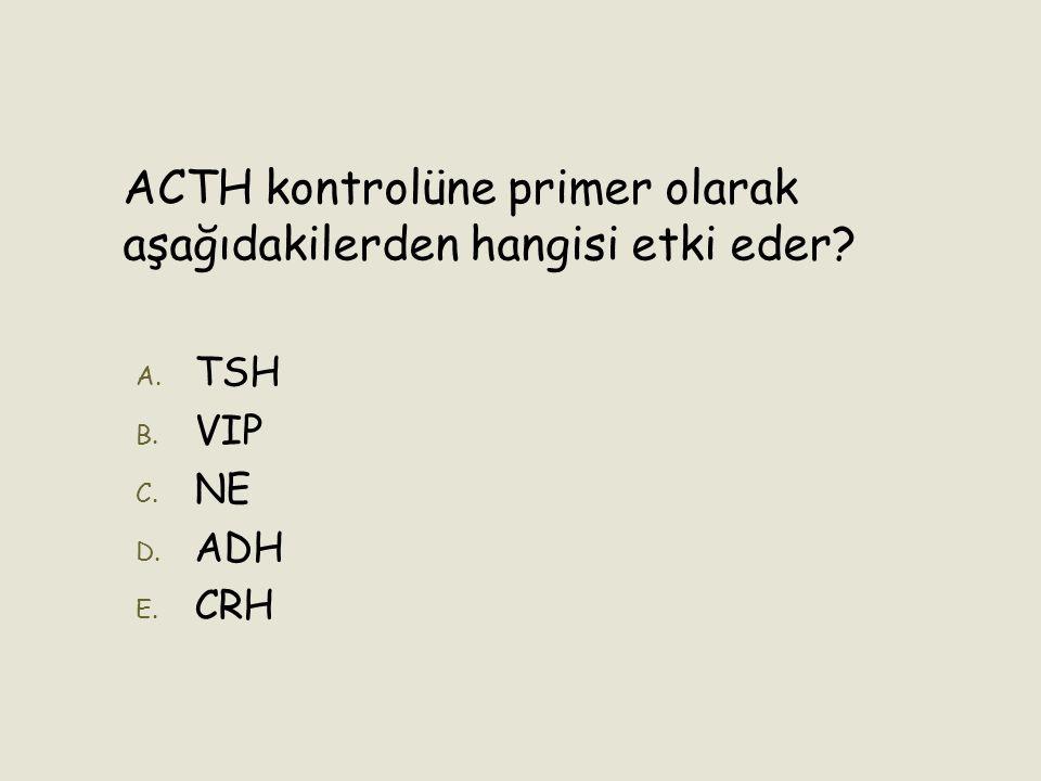 ACTH kontrolüne primer olarak aşağıdakilerden hangisi etki eder
