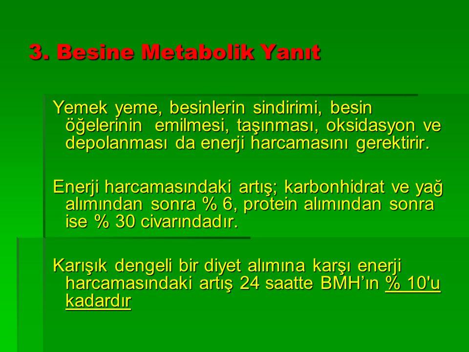 3. Besine Metabolik Yanıt