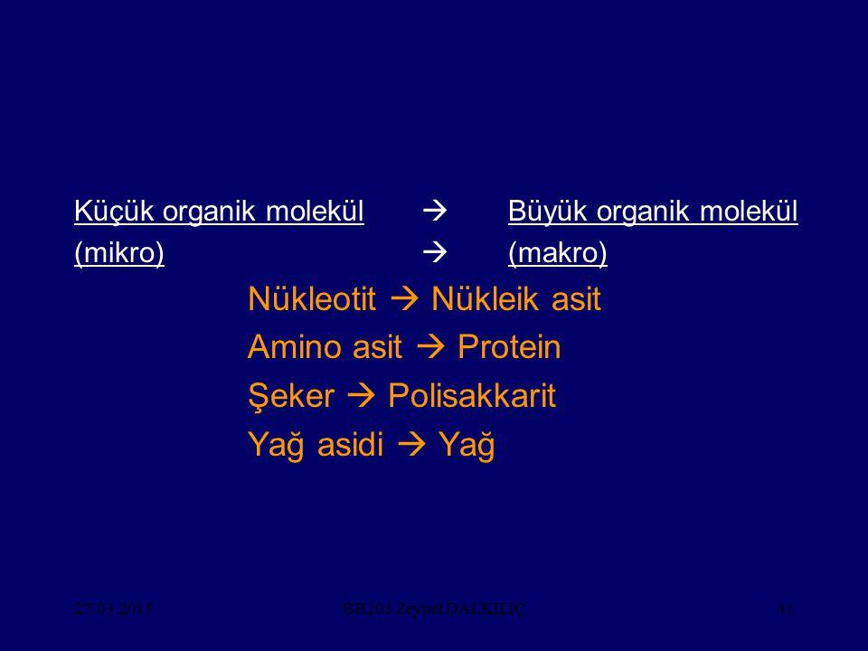 Nükleotit  Nükleik asit Amino asit  Protein Şeker  Polisakkarit