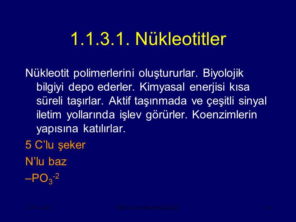 1.1.3.1. Nükleotitler