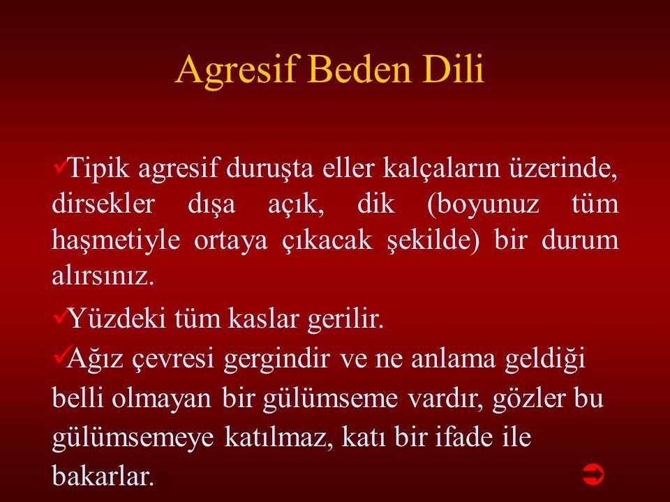 Agresif Beden Dili