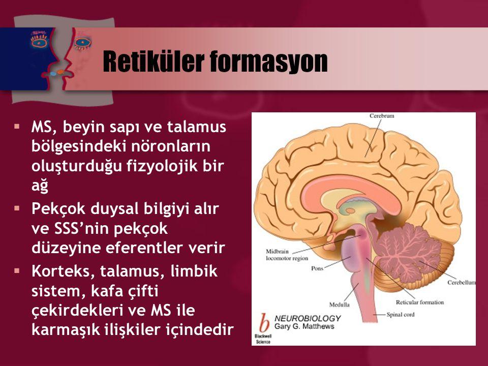 Retiküler formasyon MS, beyin sapı ve talamus bölgesindeki nöronların oluşturduğu fizyolojik bir ağ.