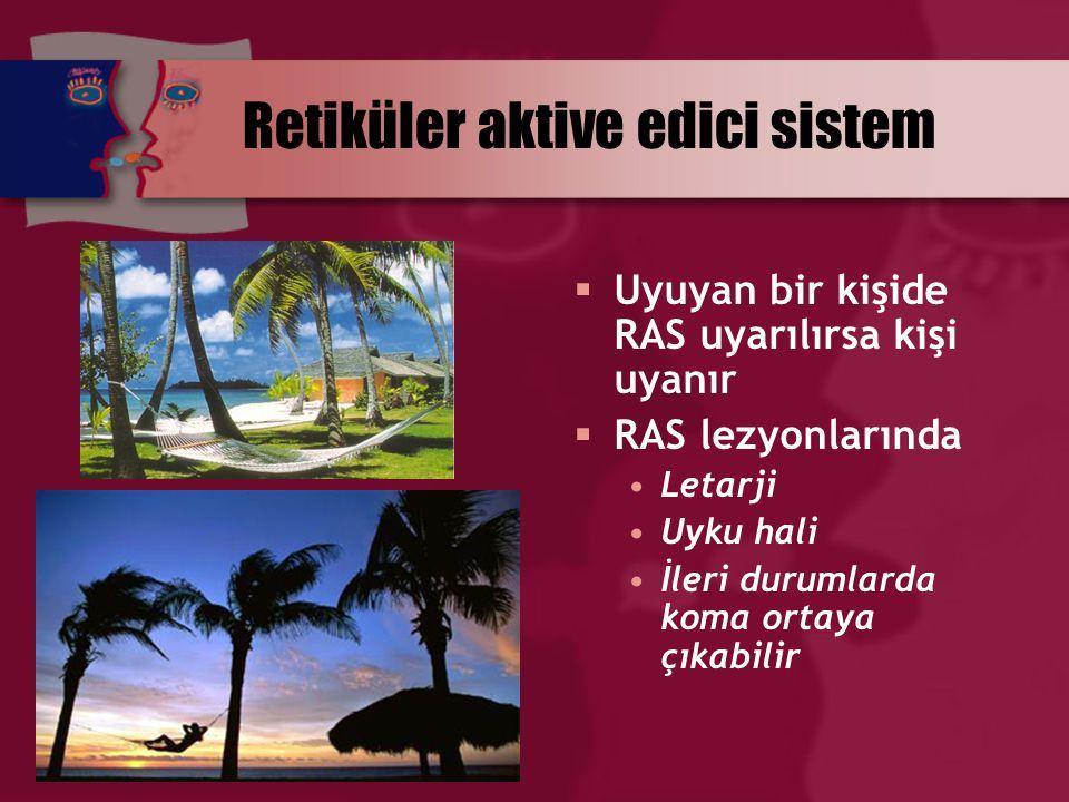 Retiküler aktive edici sistem