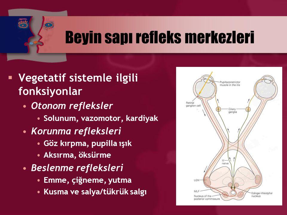 Beyin sapı refleks merkezleri