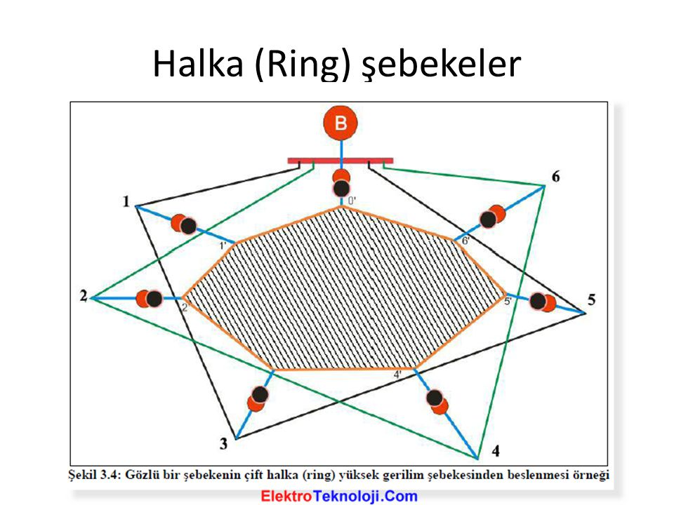 Halka (Ring) şebekeler