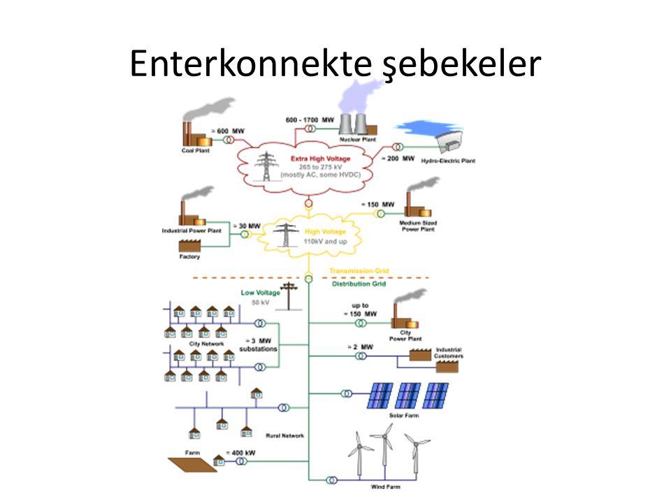 Enterkonnekte şebekeler