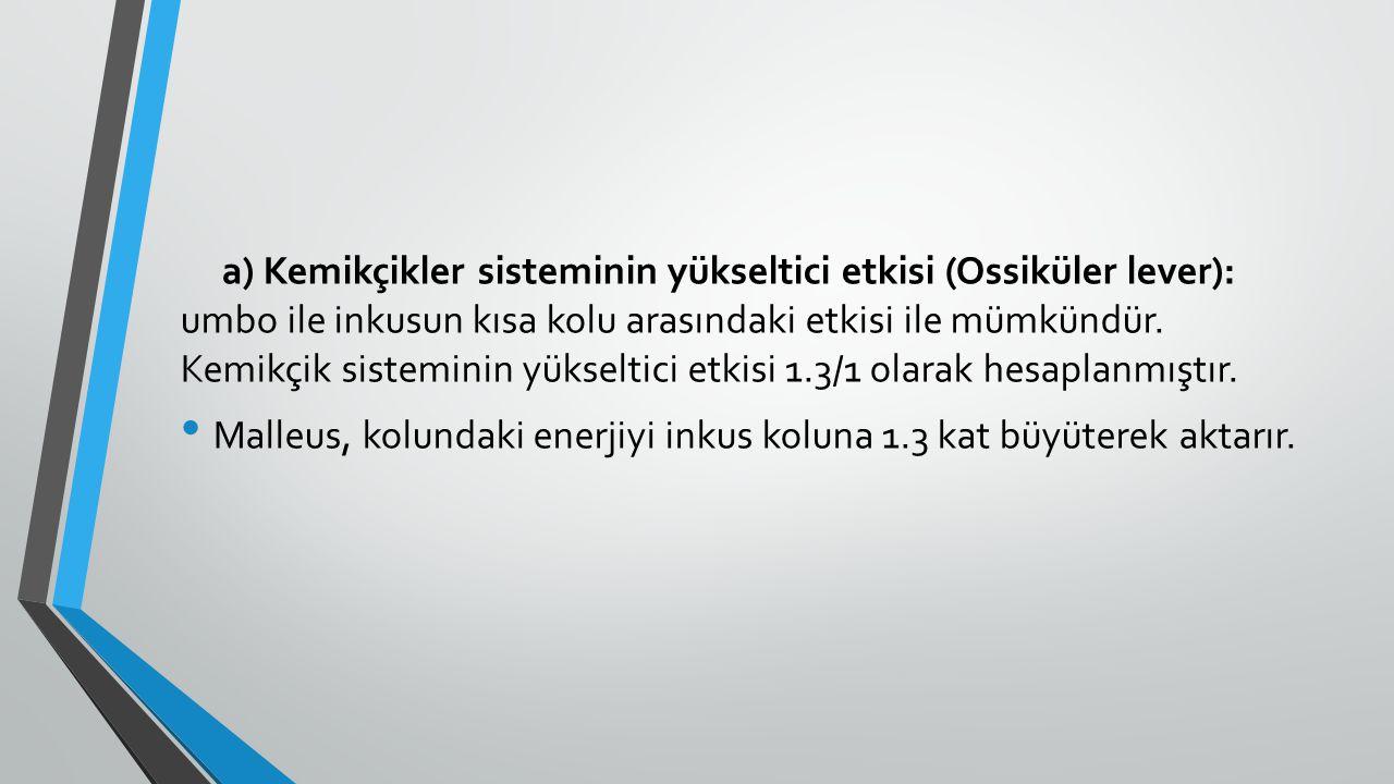 a) Kemikçikler sisteminin yükseltici etkisi (Ossiküler lever): umbo ile inkusun kısa kolu arasındaki etkisi ile mümkündür. Kemikçik sisteminin yükseltici etkisi 1.3/1 olarak hesaplanmıştır.