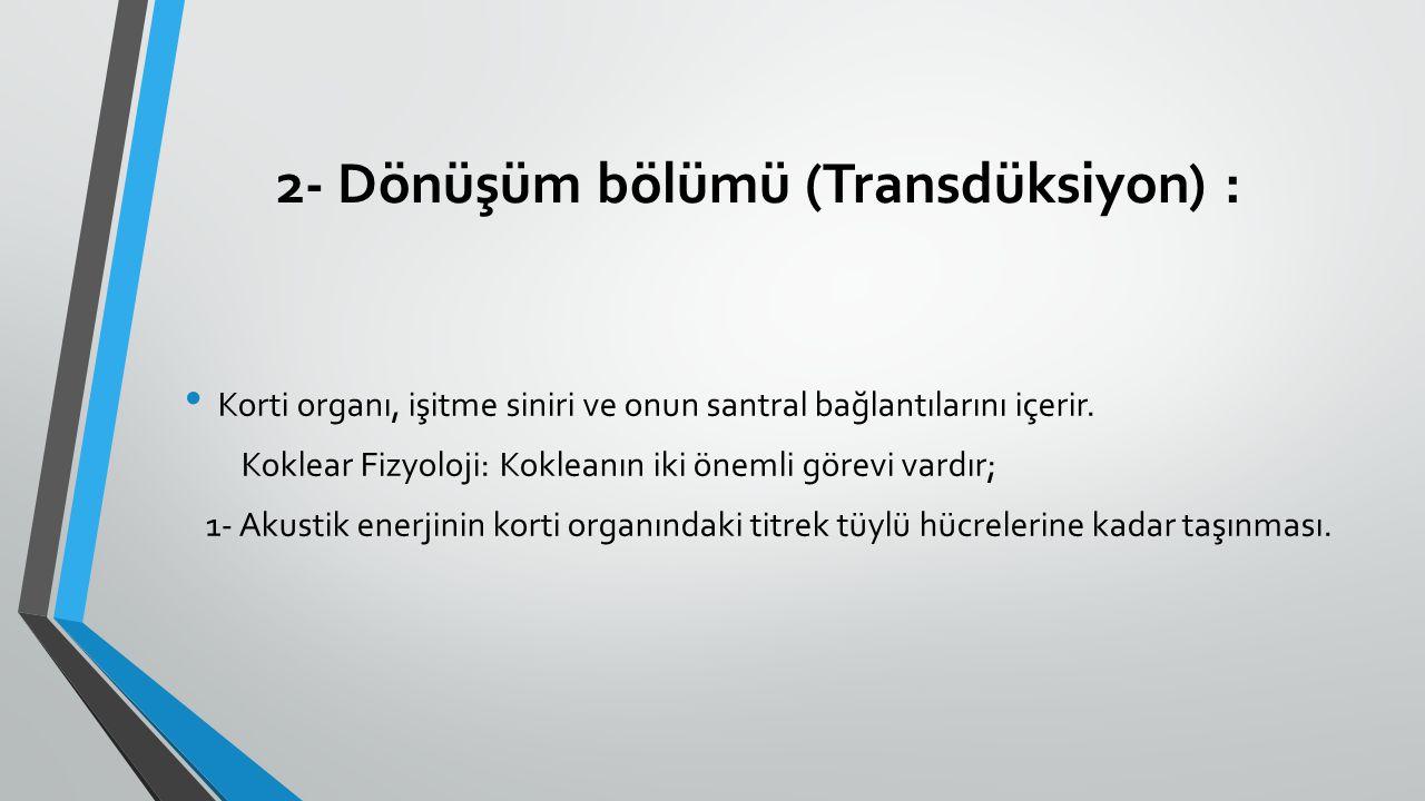 2- Dönüşüm bölümü (Transdüksiyon) :