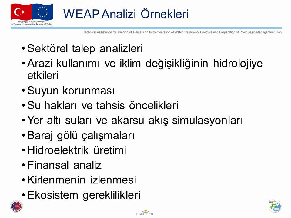WEAP Analizi Örnekleri