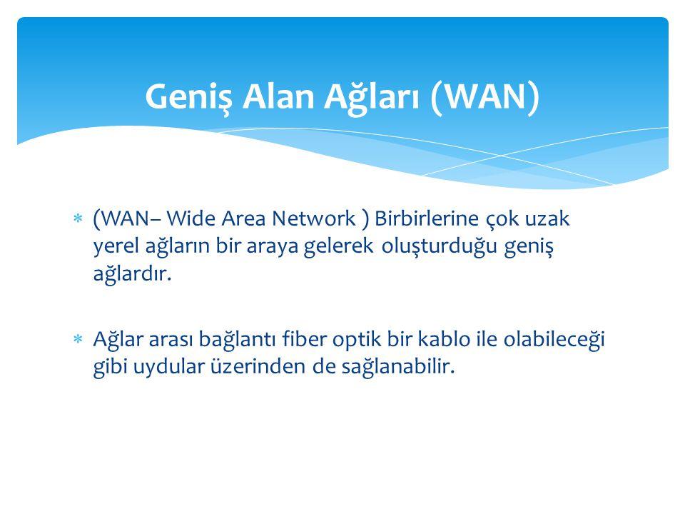 Geniş Alan Ağları (WAN)