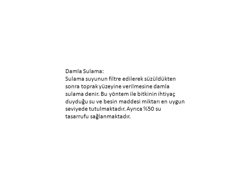 Damla Sulama: