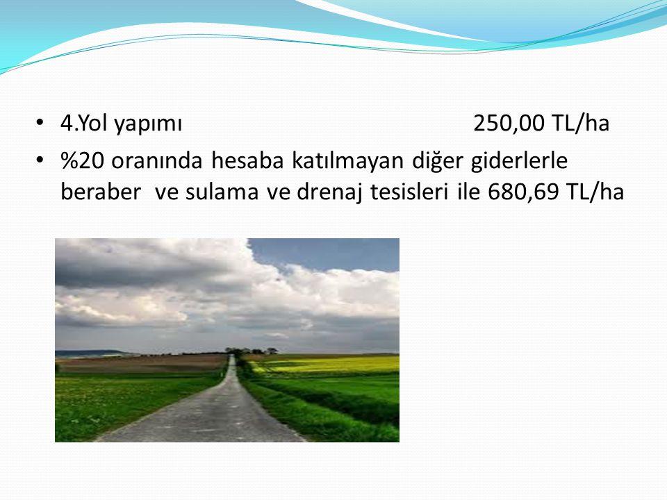4.Yol yapımı 250,00 TL/ha