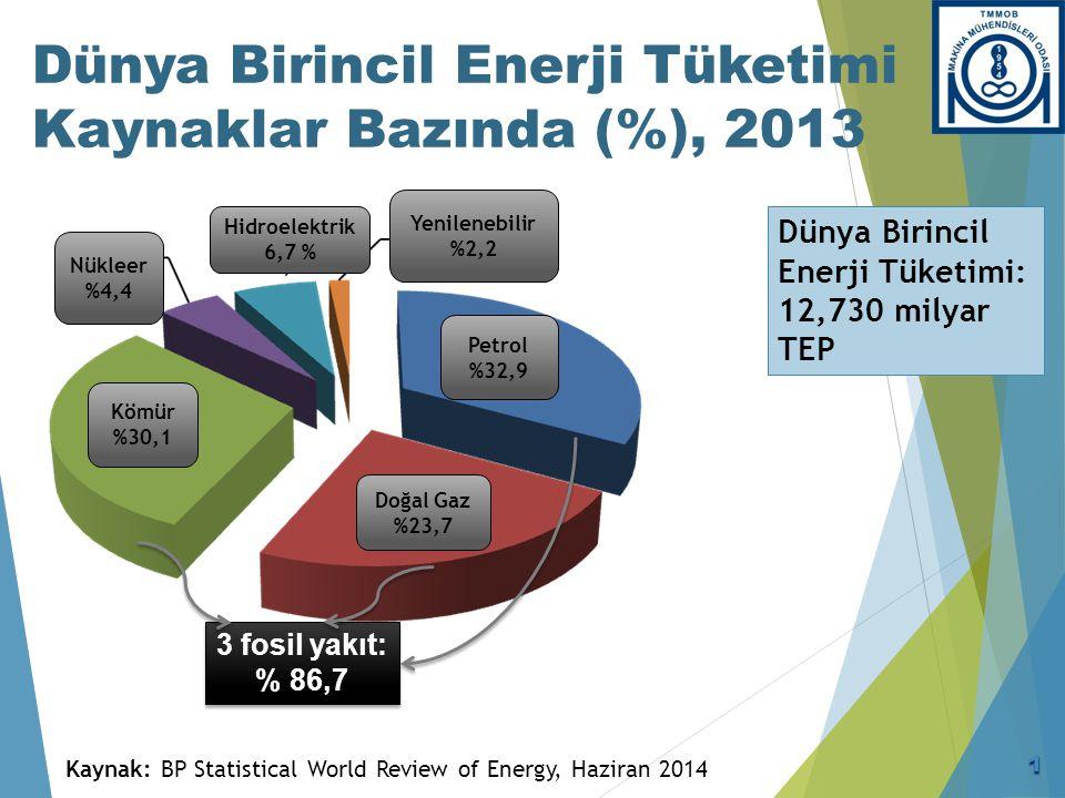 Türkiye Birincil Enerji Tüketimi (2013)