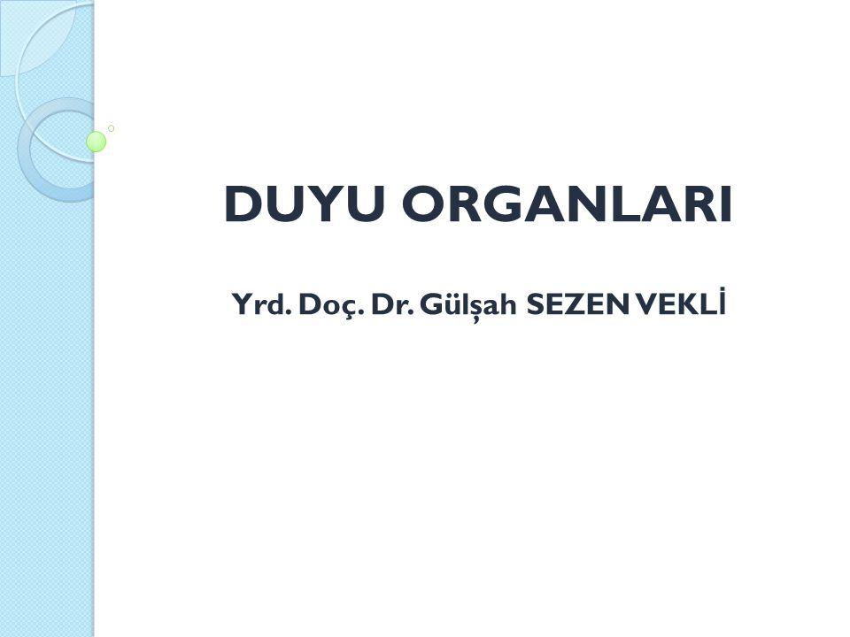 DUYU ORGANLARI Yrd. Doç. Dr. Gülşah SEZEN VEKLİ