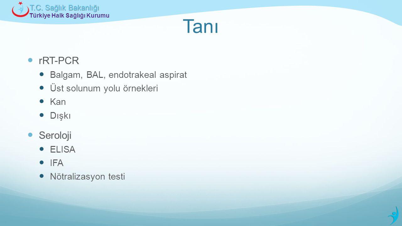 Tanı rRT-PCR Seroloji Balgam, BAL, endotrakeal aspirat