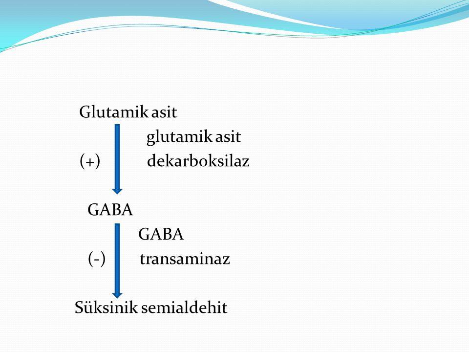 Glutamik asit glutamik asit (+) dekarboksilaz GABA (-) transaminaz Süksinik semialdehit