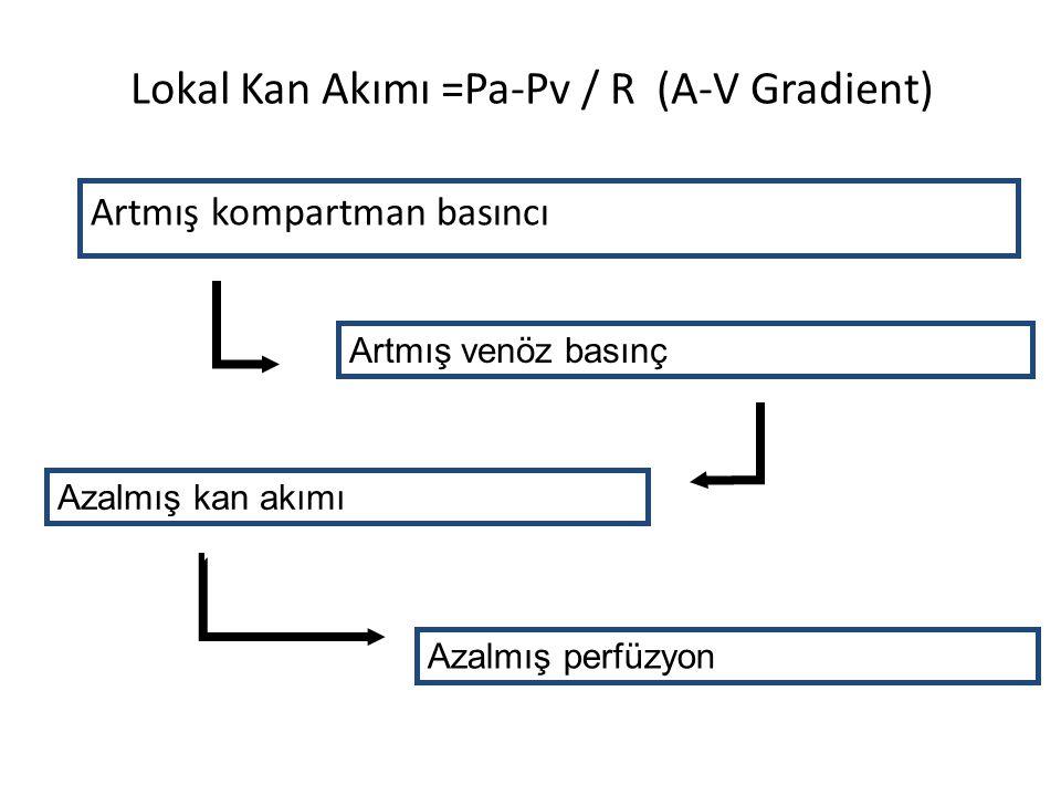 Lokal Kan Akımı =Pa-Pv / R (A-V Gradient)