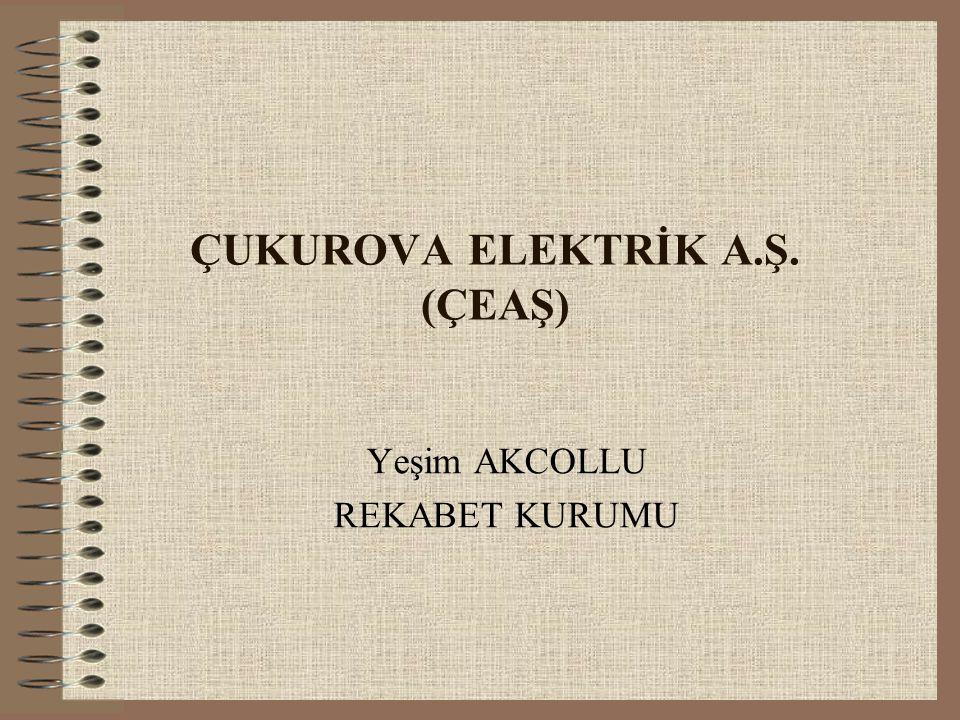 ÇUKUROVA ELEKTRİK A.Ş. (ÇEAŞ)
