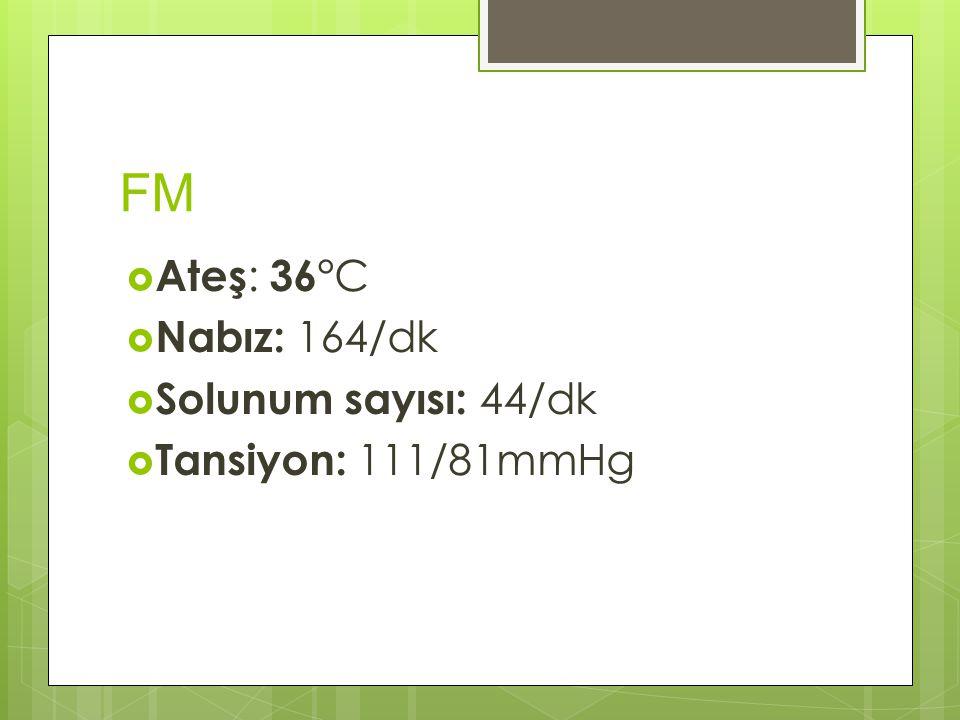 FM Ateş: 36°C Nabız: 164/dk Solunum sayısı: 44/dk Tansiyon: 111/81mmHg