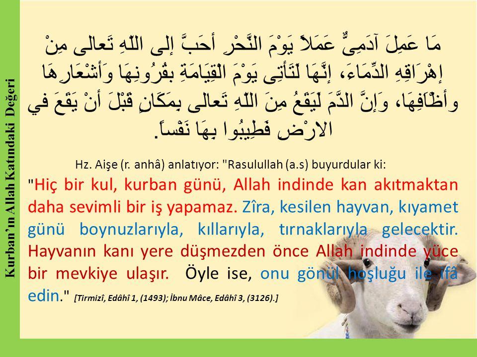 Kurban'ın Allah Katındaki Değeri
