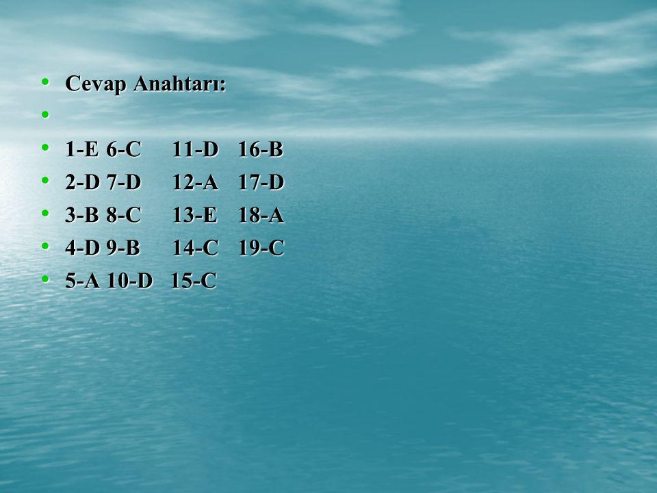 Cevap Anahtarı: 1-E 6-C 11-D 16-B. 2-D 7-D 12-A 17-D.