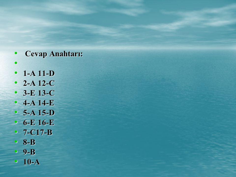 Cevap Anahtarı: 1-A 11-D 2-A 12-C 3-E 13-C 4-A 14-E 5-A 15-D 6-E 16-E 7-C17-B 8-B 9-B 10-A
