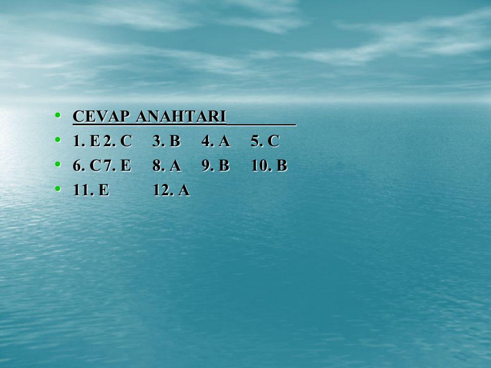 CEVAP ANAHTARI________