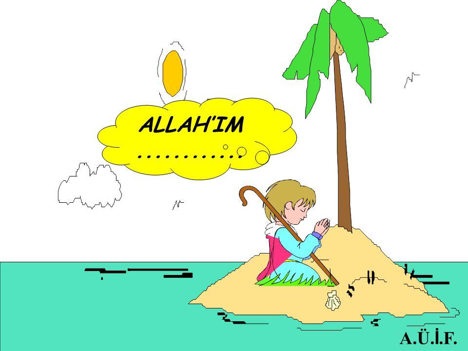 ALLAH'IM ............ A.Ü.İ.F.