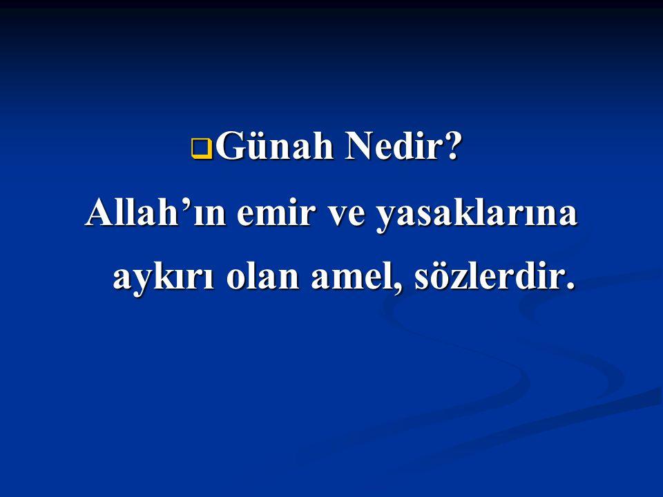 Allah'ın emir ve yasaklarına aykırı olan amel, sözlerdir.