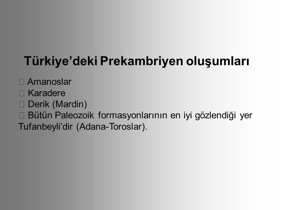Türkiye'deki Prekambriyen oluşumları