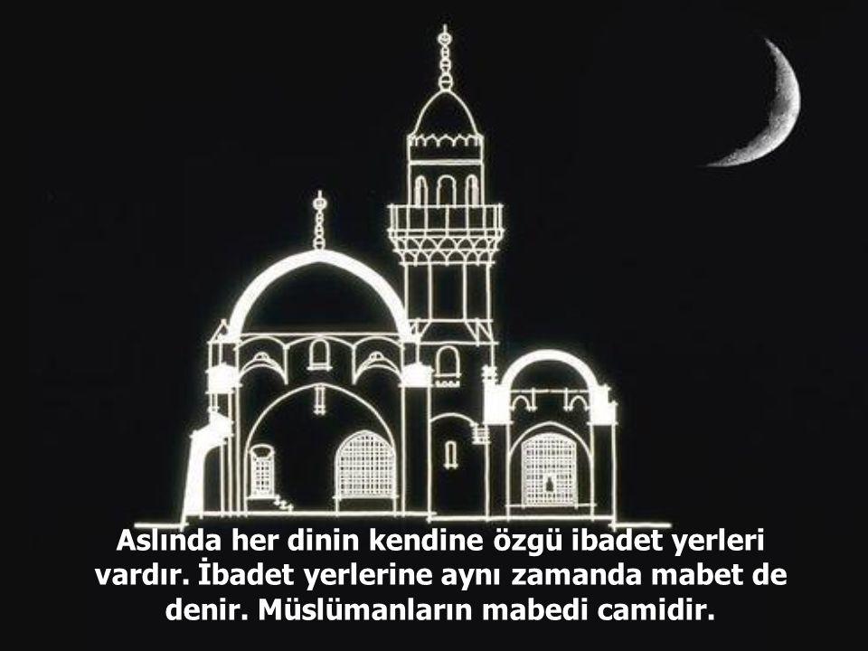 Aslında her dinin kendine özgü ibadet yerleri vardır