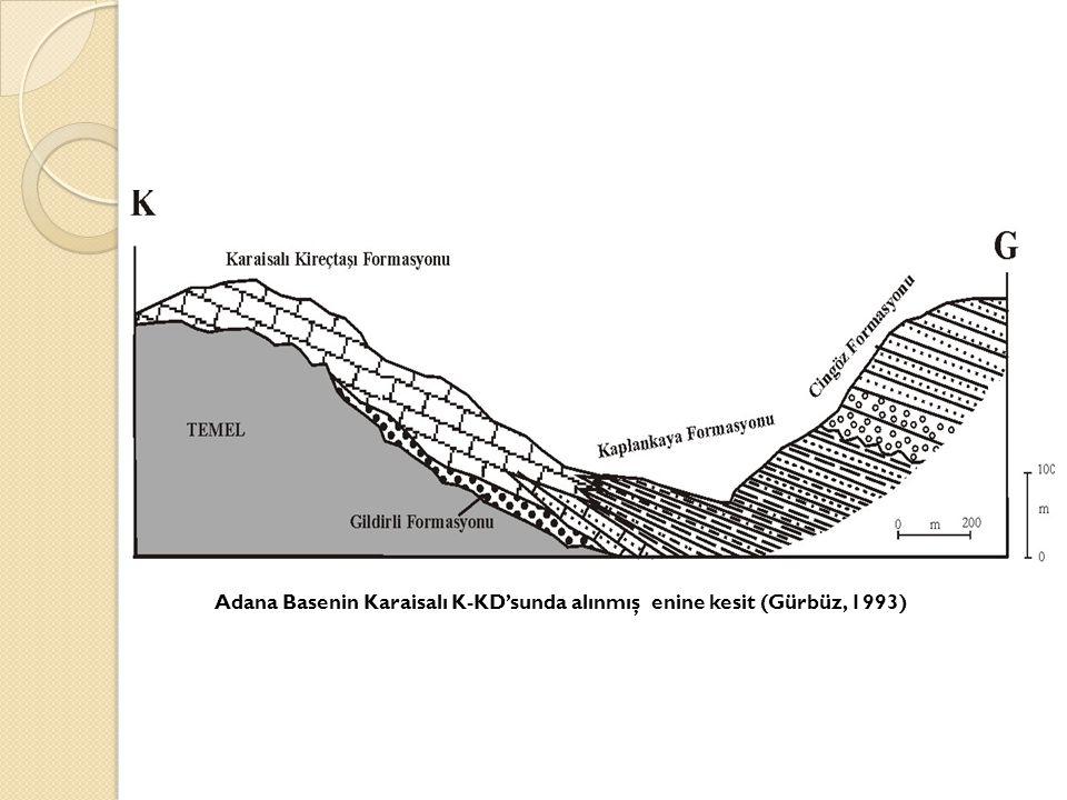 Adana Basenin Karaisalı K-KD'sunda alınmış enine kesit (Gürbüz, 1993)